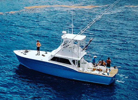 Shine Eye Girl Fishing Charter