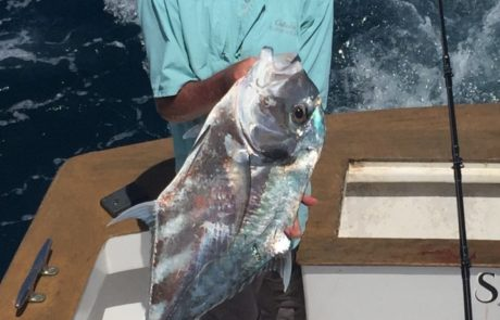 African Pompano Fishing Charter Parguera 2